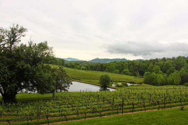Weekend Guide To Georgia S Wine Country This Is My South