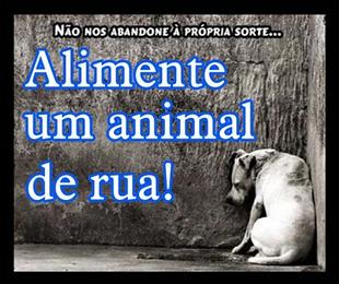 Clique aqui e escolha uma fugura em defesa dos animais.