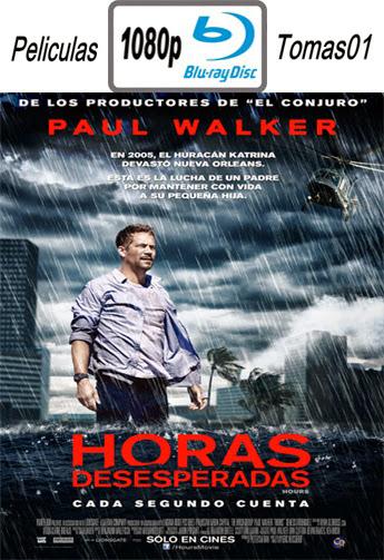 Horas Desesperadas (2013) BRRip 1080p