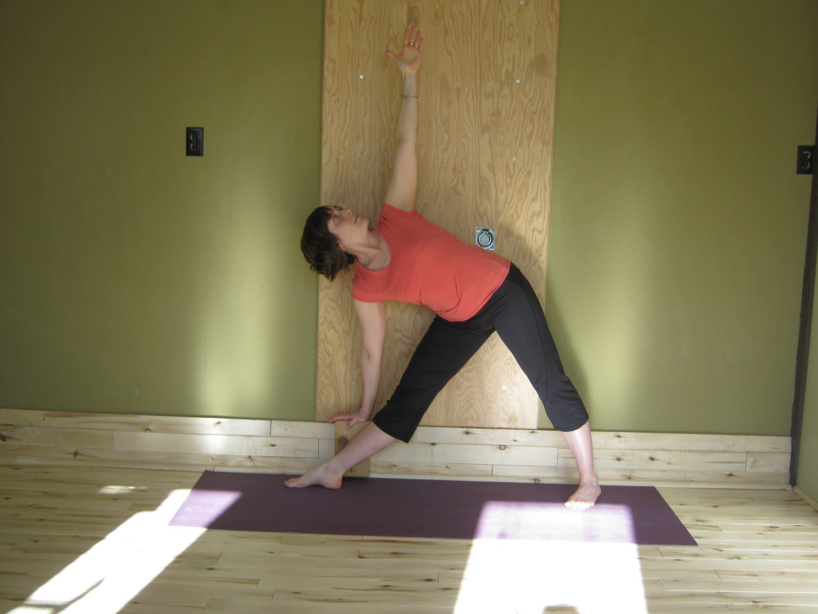 Pln Yoga Studio Pamela Nelson Yoga For Backache