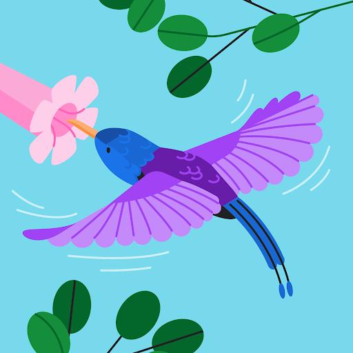 Joana Salazar