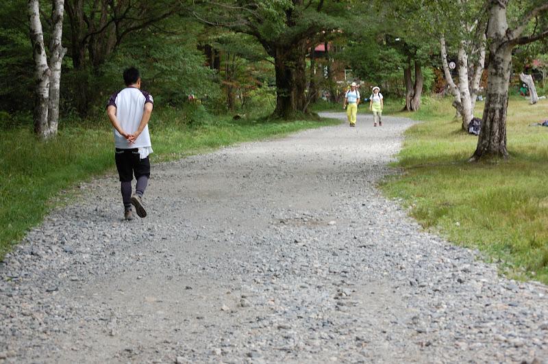 明神から徳沢の登山道の写真