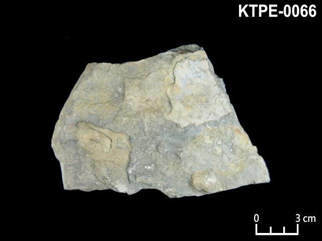 KTPE-0066 砂岩