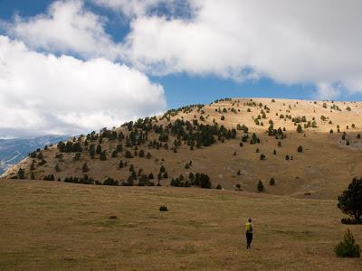 Cap de la Serra del Verd