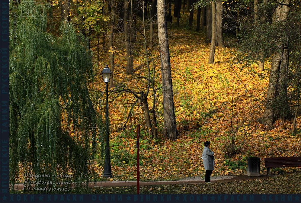 хоки, hoki, осень, autumn colors, краски осени,
