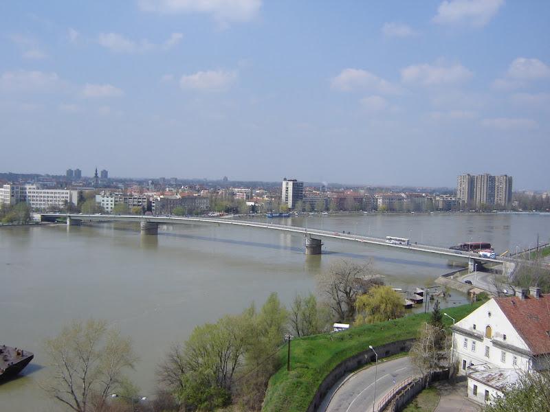 Novi Sad Serbia Novi Sad Serbia 1147543371 Jpg