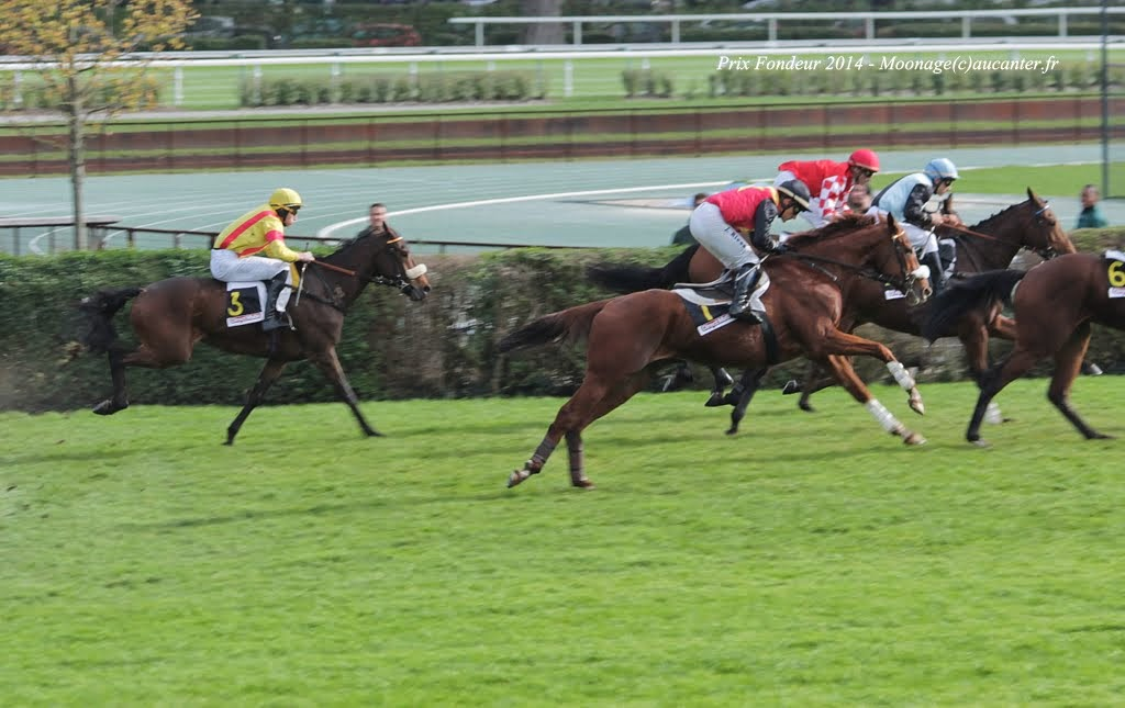 Photos Auteuil 2-11-2014 (48h de l'obstacle) IMG_5283
