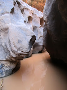 The Black Hole of White Canyon. We turned around here.