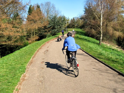 cyclists in sunny park