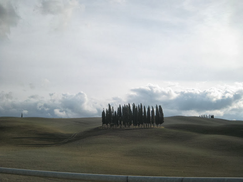 San Quirico d'Orcia's cypress trees near the Cassia road