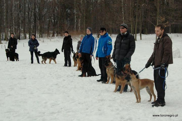 grupa szkoleniowa rottweiler