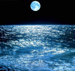 immagine marina