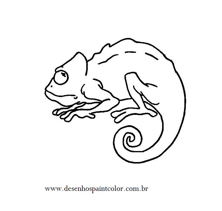 desenho de camaleÃo para imprimir e colorir desenho de rÉptil para