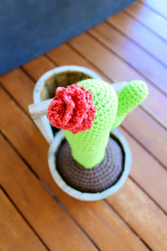 Not 2 late to craft:  Cactus de ganxet / Crocheted cactus