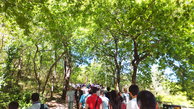 Gran Duna de Pilat, Arcachon, Francia, Elisa N, Blog de Viajes, Lifestyle, Travel, Pyla