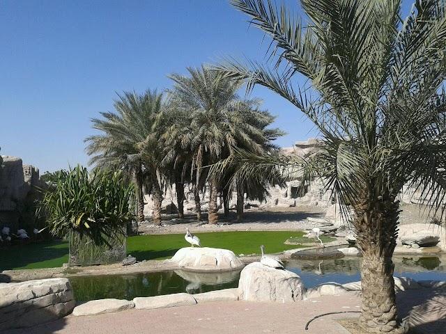 Arabia's Wildlife Centre