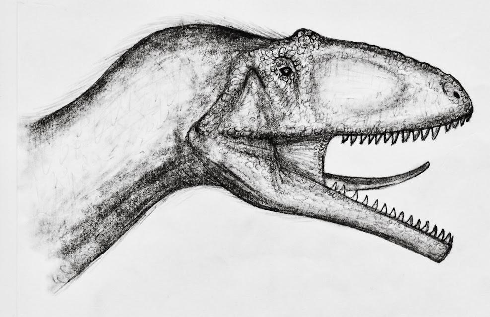 eure dinosaurier-Bilder - Seite 2 M.roseae_head_fleshedout