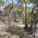 track winding down to Galston gorge (71029)