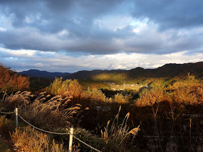 Golden sun in the hills outside Kyoto