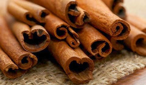 gambar kulit kayu manis