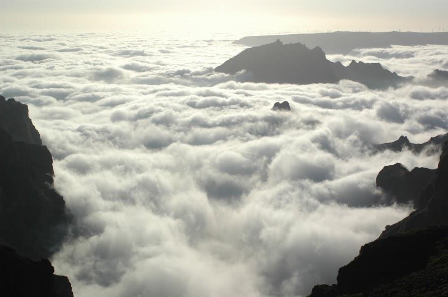 Entre a Montanha e o Mar - Página 2 DSC_8734