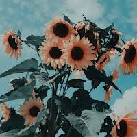 Alyssa_agtfan