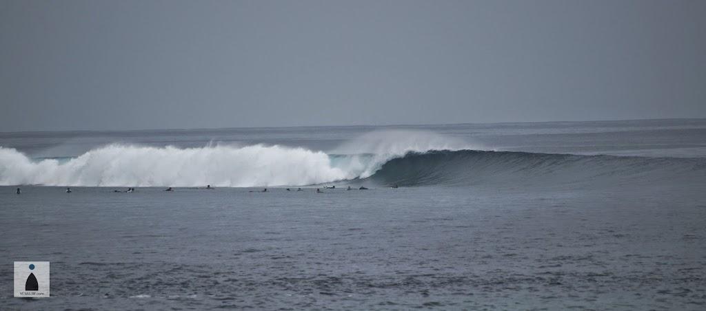 몰디브 서핑