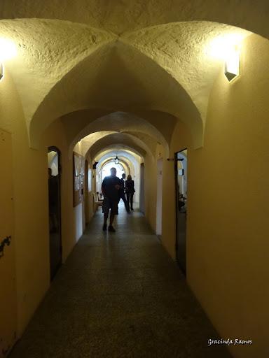 passeando - Passeando pela Suíça - 2012 - Página 9 DSC02228