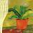 江品儀 avatar image