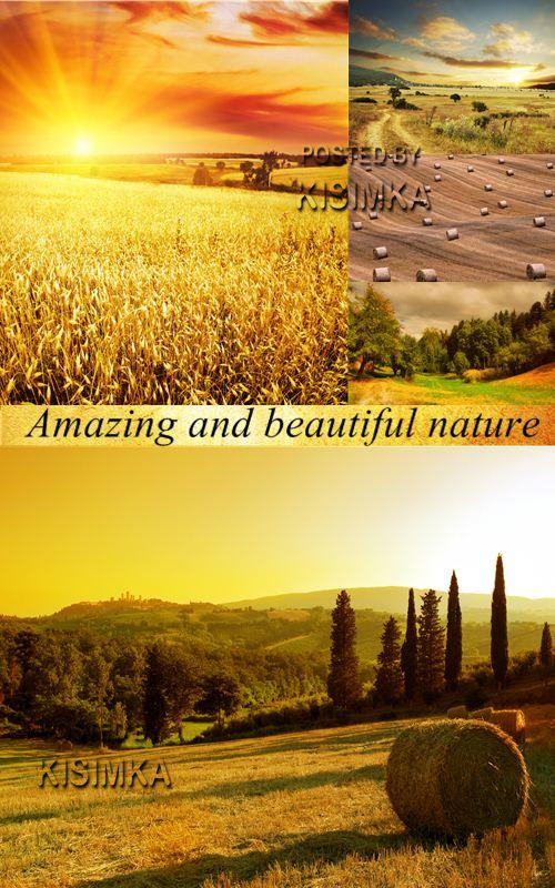 Stock Photo: Amazing and beautiful nature