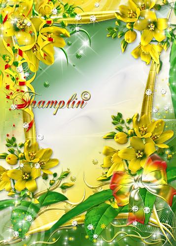 Рамка  для Photoshop с цветами – Подари мне улыбку свою, солнце, ветер, дождинки, зарю
