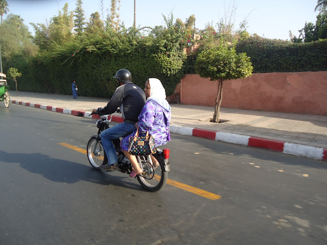 marrocos - Marrocos 2011 DSC03298