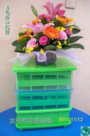 可無限疊層有機芽菜培育箱