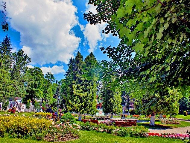 parc borsec