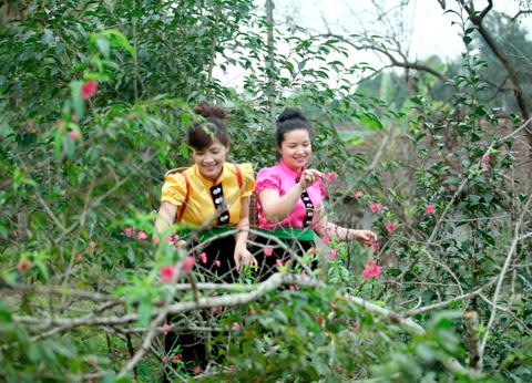Ảnh 2 cô gái Tây Bắc đi tìm hoa trong rừng