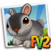 farmville 2 cheats for baby Chinchilla Rabbit