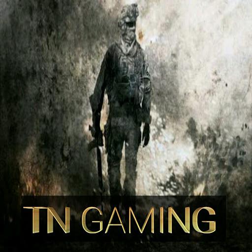 TN Gaming review