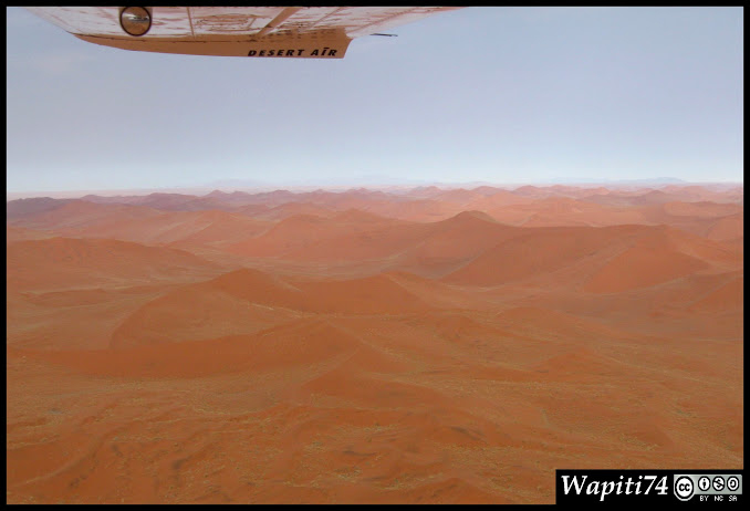 Balade australe... 11 jours en Namibie - Page 2 IMG_0734