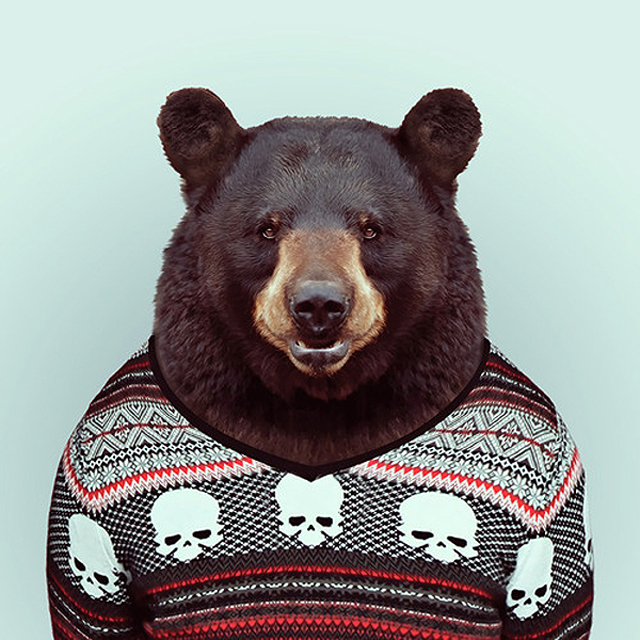 *Zoo Portraits動物時尚秀:正經八百時裝篇! 8