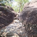 a Rock Gully (178974)