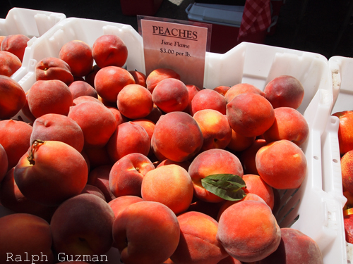 Ferry Plaza Farmers Market - RatedRalph.com