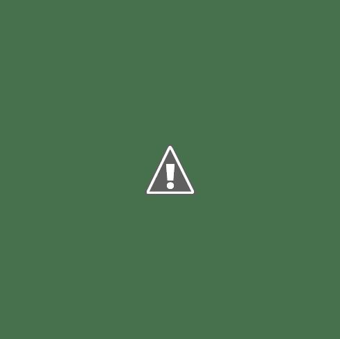 Cancela Aberta