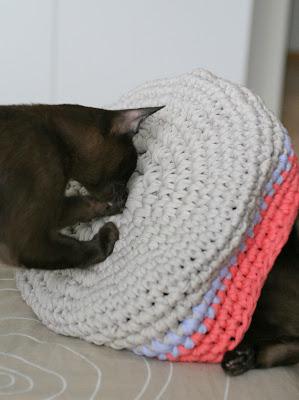 Kissanpesän monet funktiot
