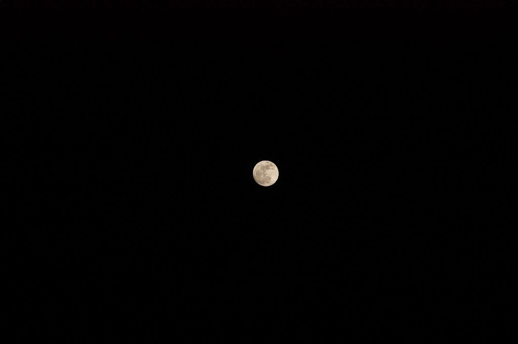 月色.試拍