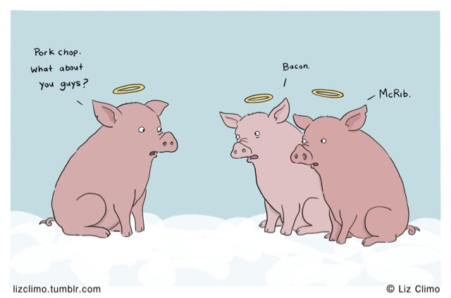 Pigs from heaven