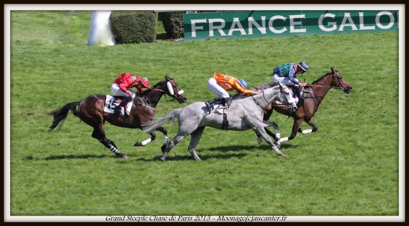 Photos Auteuil 17-05-2015 Journée du Grand Steeple IMG_0233