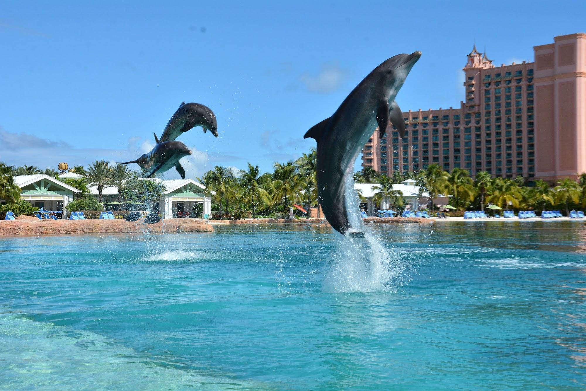 Reisinformatie Bahama's