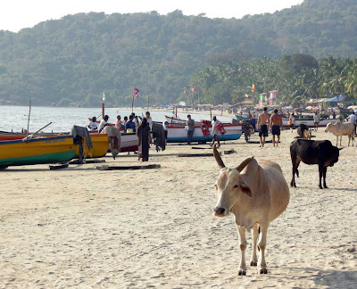 palolem-beach-south-goa-india