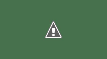 rezultate vot alegeri prezidentiale 2014 02 Harta votului   O țară, două Românii