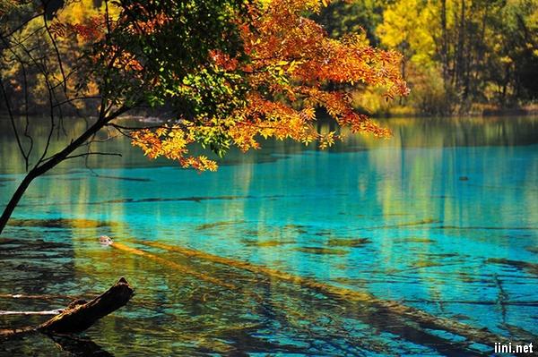 thơ hay mùa thu về